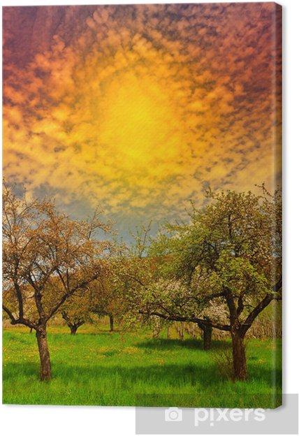 Obraz na płótnie Kwitnące drzewa - Pory roku