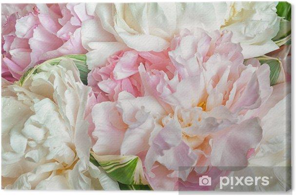 Obraz na płótnie Kwitnące piwonie - Tematy