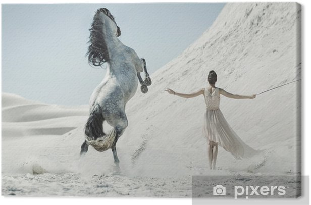 Obraz na płótnie Ładna pani z ogromnym koniem na pustyni - Ludzie
