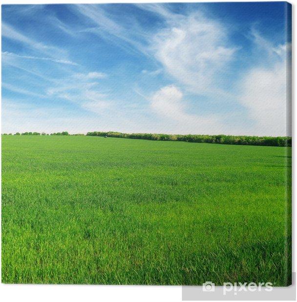 Obraz na płótnie Łąka i błękitne niebo - Krajobraz wiejski