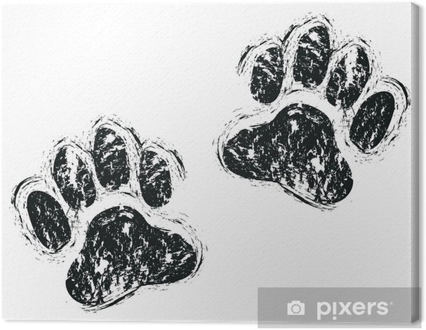 Obraz na płótnie Lapy psa - Tematy