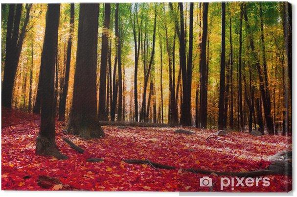 Obraz na płótnie Las jesienią z złote światło - Tematy