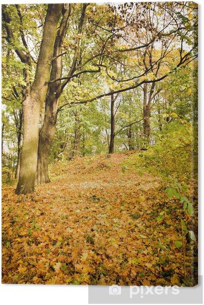 Obraz na płótnie Las jesienią - Tematy