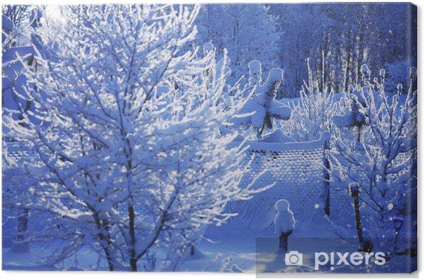 Obraz na płótnie Las sosnowy - Pory roku