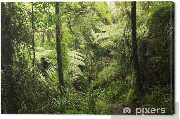 Obraz na płótnie Las tropikalny - Tematy