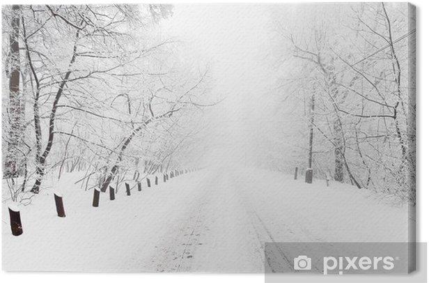Obraz na płótnie Las w zimie - Pory roku