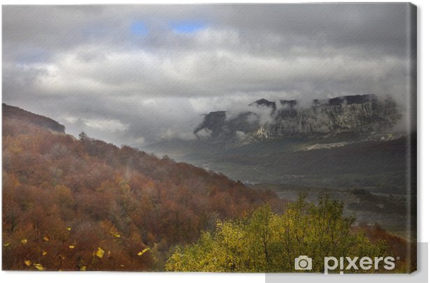 Obraz na płótnie Las we mgle - Pory roku