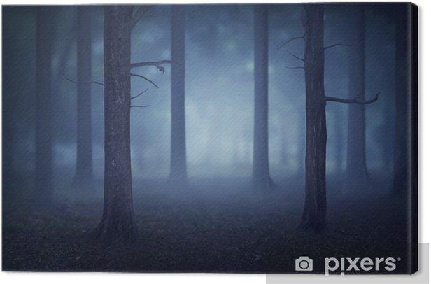 Obraz na płótnie Las z mnóstwem drzew i mgły - Krajobrazy