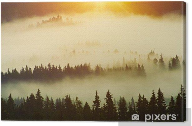 Obraz na płótnie Las - Krajobrazy