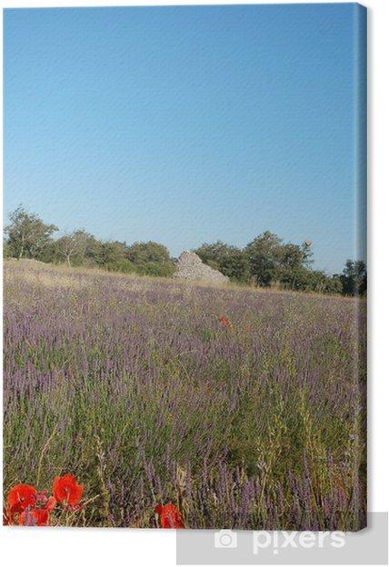 Obraz na płótnie Lavender i Borie - Pory roku