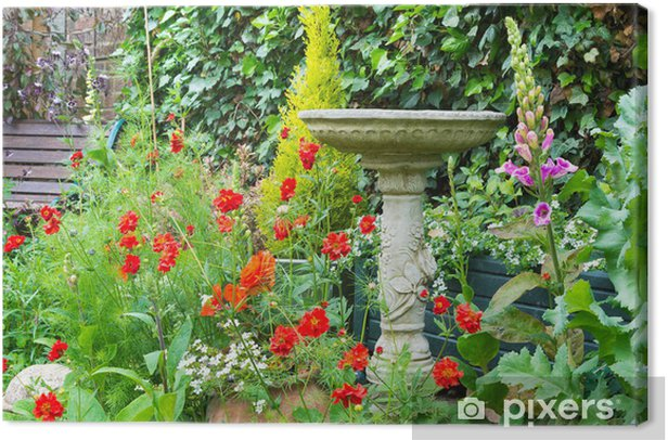 Obraz na płótnie Letnie kwiaty dekoracyjne pościel kamień ptaka kąpieli - Rośliny