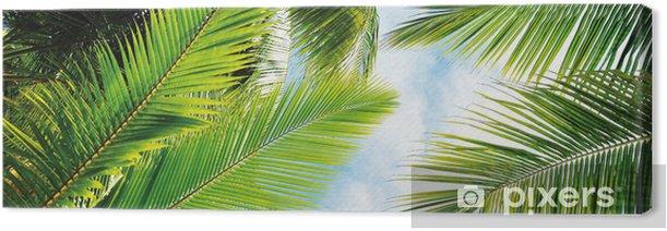 Obraz na płótnie Liść palmowy - Palmy