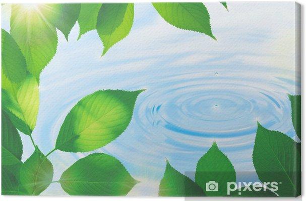 Obraz na płótnie Liście i krople wody - Tematy