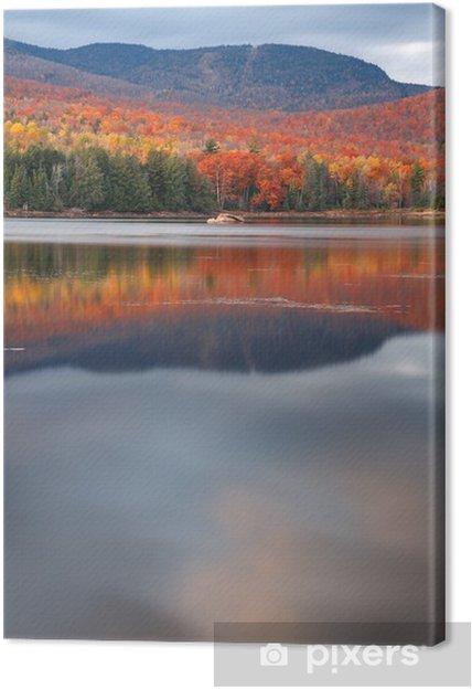 Obraz na płótnie Loon Lake - Natura i dzicz