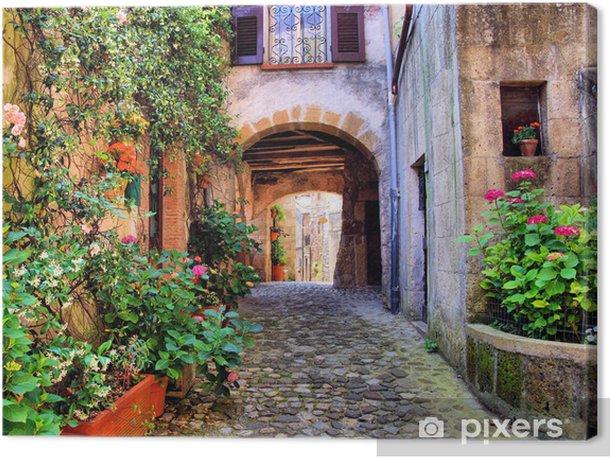 Obraz na płótnie Łukowata brukowanej ulicy w toskańskiej wiosce, włochy - Style