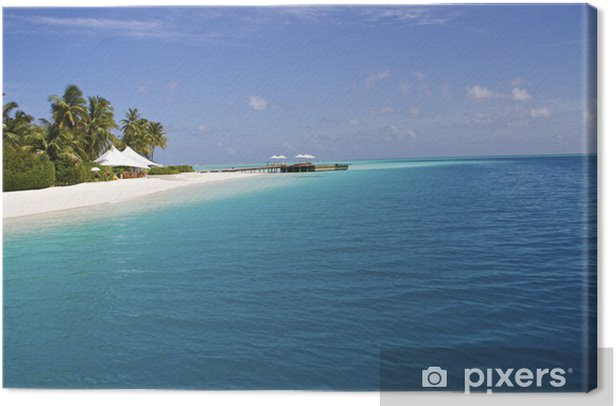 Obraz na płótnie Malediwy plaża - Oceania