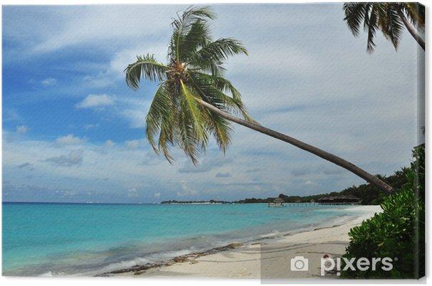 Obraz na płótnie Malediwy - Wyspa Panorama - Wakacje
