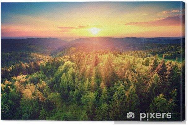 Obraz na płótnie Malerischer sonnenuntergang über dem wald - Krajobrazy