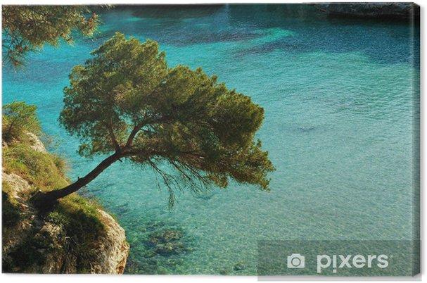 Obraz na płótnie Mallorca bay - Wakacje