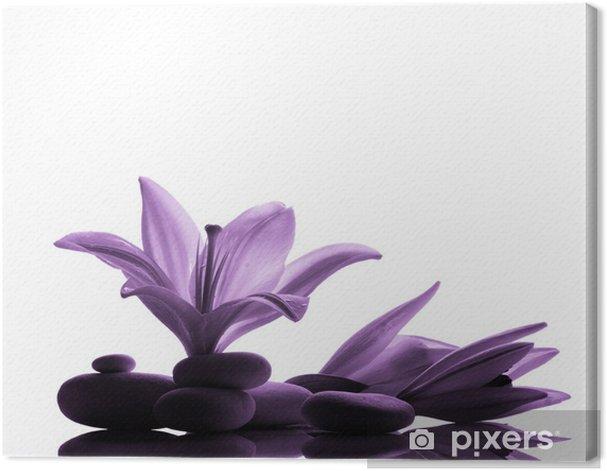 Obraz na płótnie Martwa natura z kwiatów i kamieni - Kwiaty
