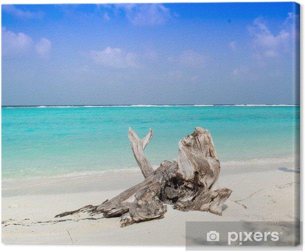 Obraz na płótnie Martwe pnia drzewa na plaży - Wakacje