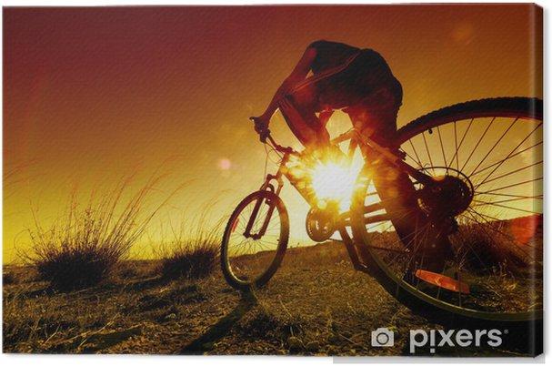 Obraz na płótnie Marzycielski słońca i zdrowe life.Fields i rower - Kolarstwo