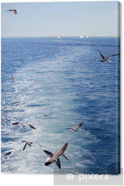 Obraz na płótnie Mewy latające i statków - Afryka