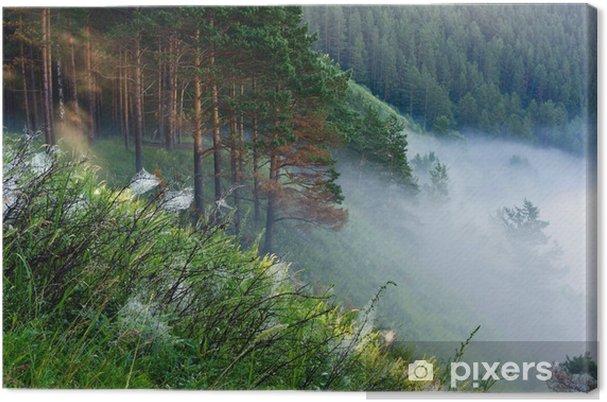 Obraz na płótnie Mgła na skraju lasu - Lasy