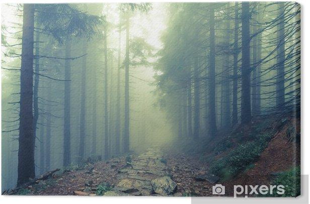 Obraz na płótnie Mgła w Haunted Forest - Krajobrazy