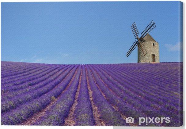 Obraz na płótnie Młyn i lawendy pola - Młyny i wiatraki