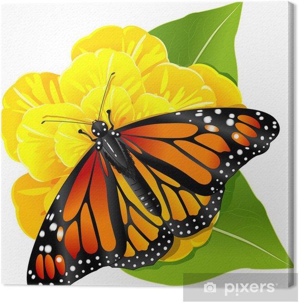 Obraz na płótnie Monarch motyl na kwiat - Inne Inne