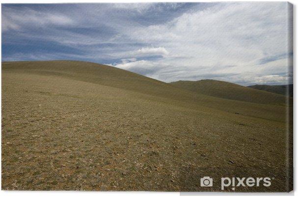 Obraz na płótnie Mongol - Pustynie