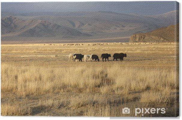 Obraz na płótnie Mongolia - Azja