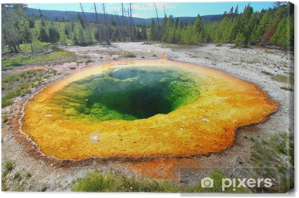 Obraz na płótnie Morning Glory Pool Yellowstone - Ameryka