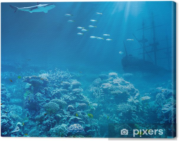 Obraz na płótnie Morza lub oceanu, pod wodą z rekinem i skarby statek zatonął - Rekiny