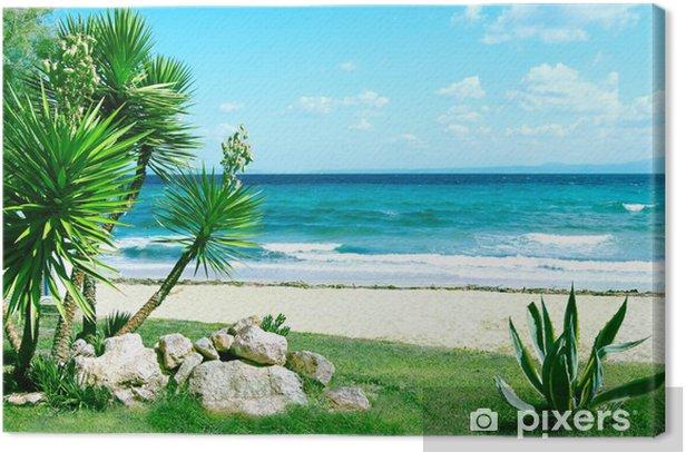 Obraz na płótnie Morze i trawa pod błękitne niebo - Pory roku