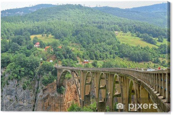 Obraz na płótnie Most na rzece Tara w Czarnogórze - Europa