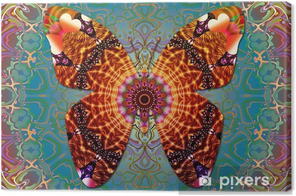 Obraz na płótnie Motyl fantasy - Zasoby graficzne