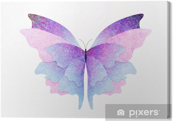 Obraz na płótnie Motyl z teksturą - Zwierzęta