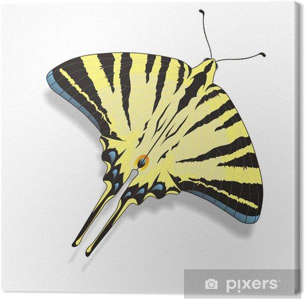 Obraz na płótnie Motyl - Fikcyjne zwierzęta