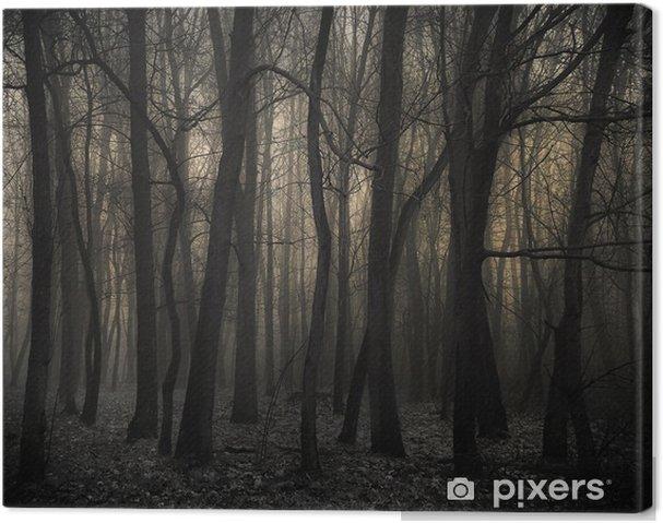 Obraz na płótnie Mroczny las - Style
