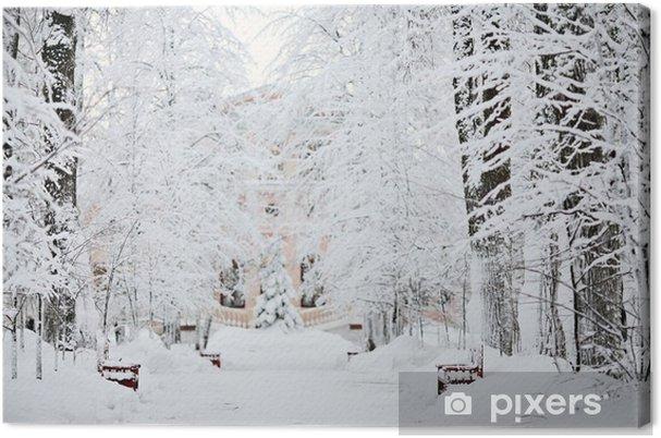 Obraz na płótnie Mroźna zima śnieg krajobraz lasu - iStaging