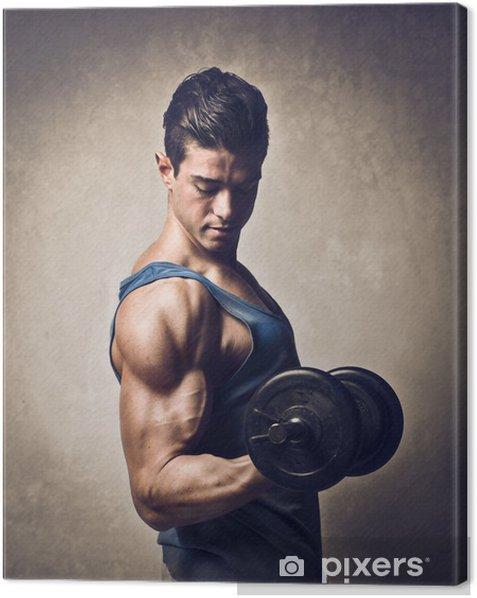 Obraz na płótnie Muscles -