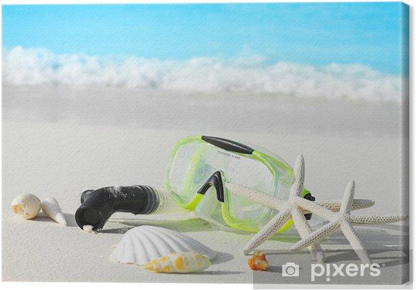 Obraz na płótnie Muszelki i maski - Woda