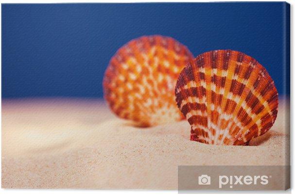 Obraz na płótnie Muszla różowy kolor i prawdziwe światło piasek na ciemnoniebieskie Studio B - Wakacje