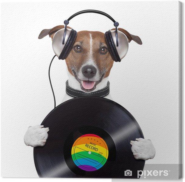 Obraz na płótnie Muzyka słuchawki winyl pies rekord - Naklejki na ścianę