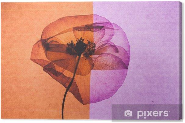 Obraz na płótnie Nice flower - Rośliny i kwiaty
