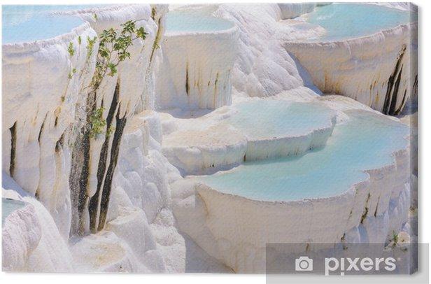 Obraz na płótnie Niebieski cyan trawertyn wody w baseny Pamukkale, Turcja - Woda