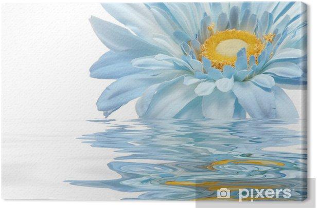 Obraz na płótnie Niebieski kwiat stokrotka - Kwiaty