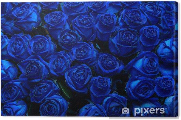 90b4c0613fb974 Obraz na płótnie Niebieskie róże • Pixers® - Żyjemy by zmieniać